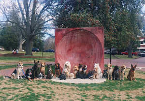 Dogs in front of the Wolf Ears on the NC State campus